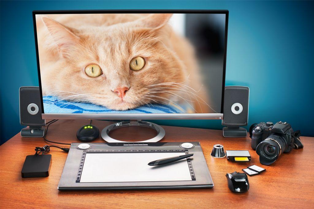 在桌上型電腦進行照片編輯